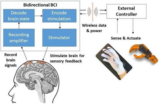 """骇科技丨人类的下一次""""进化""""?先了解下脑机接口技术如何实现"""